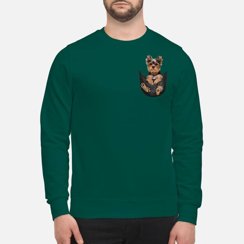 Yorkshire Terrier in a pocket sweartshirt
