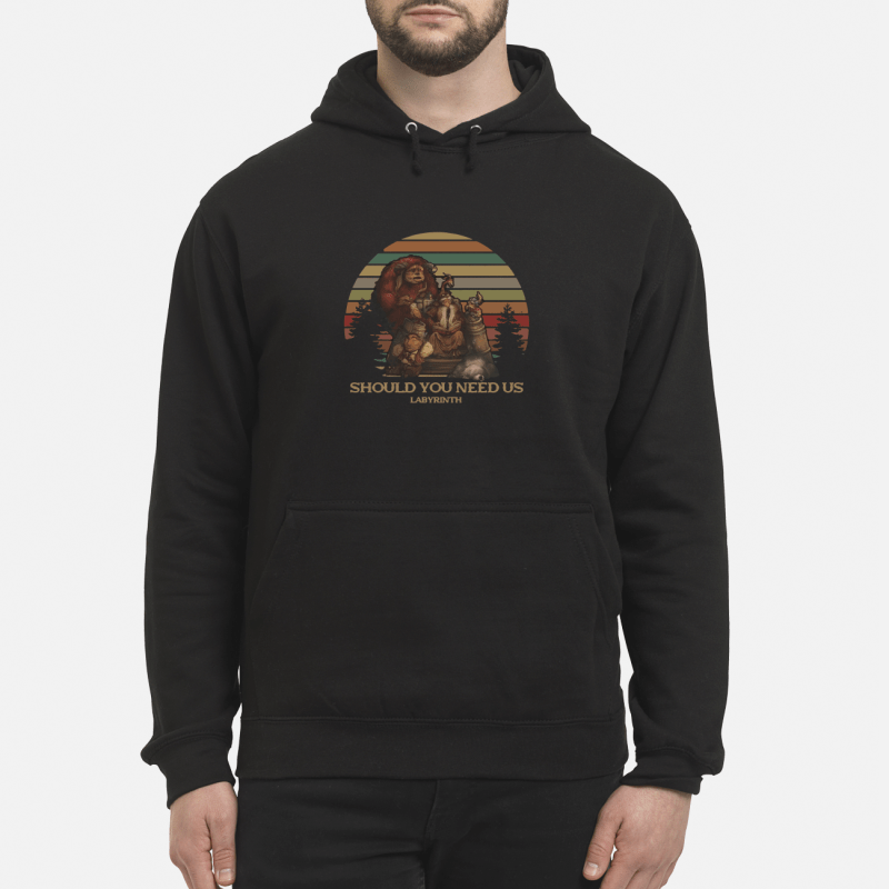 Should You Need Us Labyrinth Hoodie