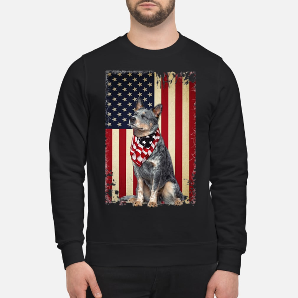 America flag dog shirt sweater