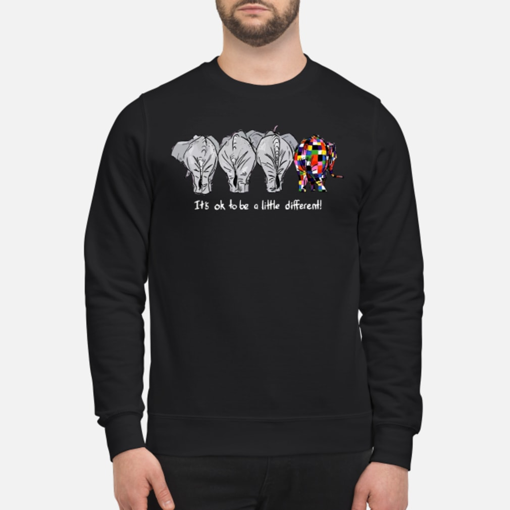 Elephant it's ok to be a little different shirt sweater