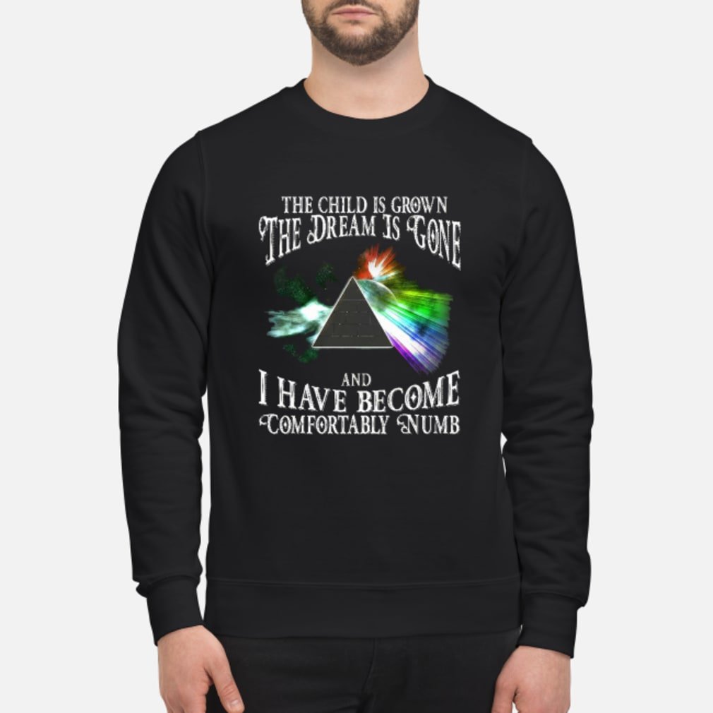 The child is grown the dream is gone and I have become comfortably numb shirt sweater