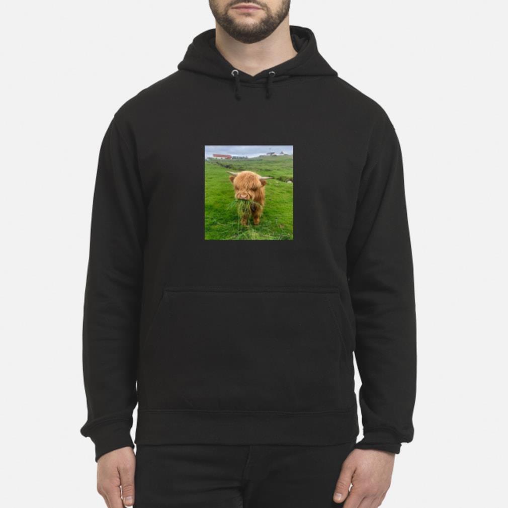 Cute Scottish Highland Cattle Shirt hoodie