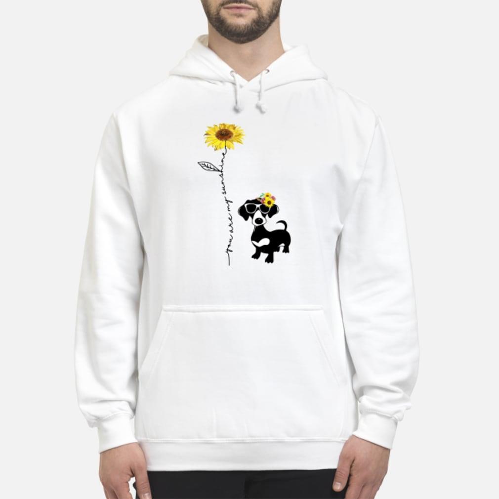 You Are My Sunshine Dachshund Shirt hoodie