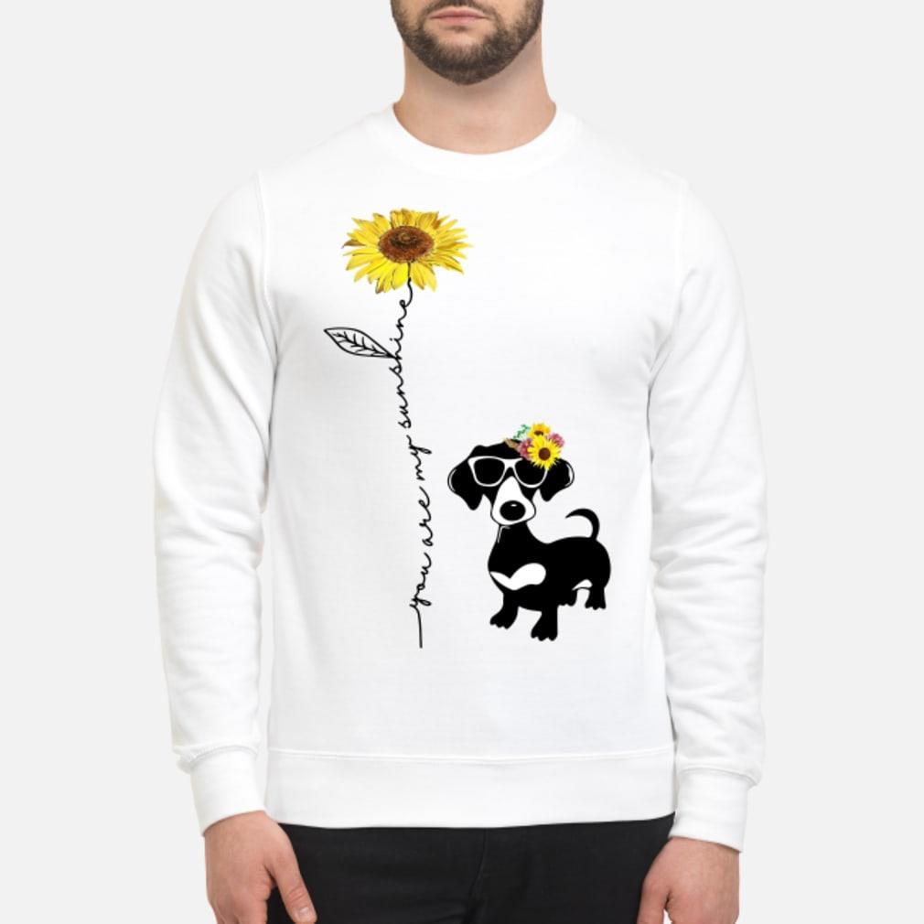 You Are My Sunshine Dachshund Shirt sweater