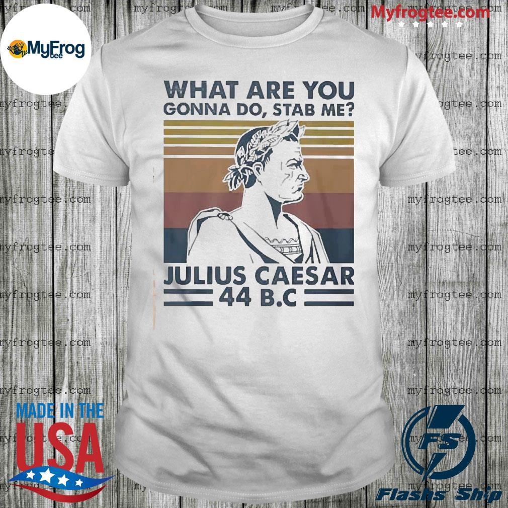 What are you gonna do stab me julius caesar 44 BC vintage retro shirt