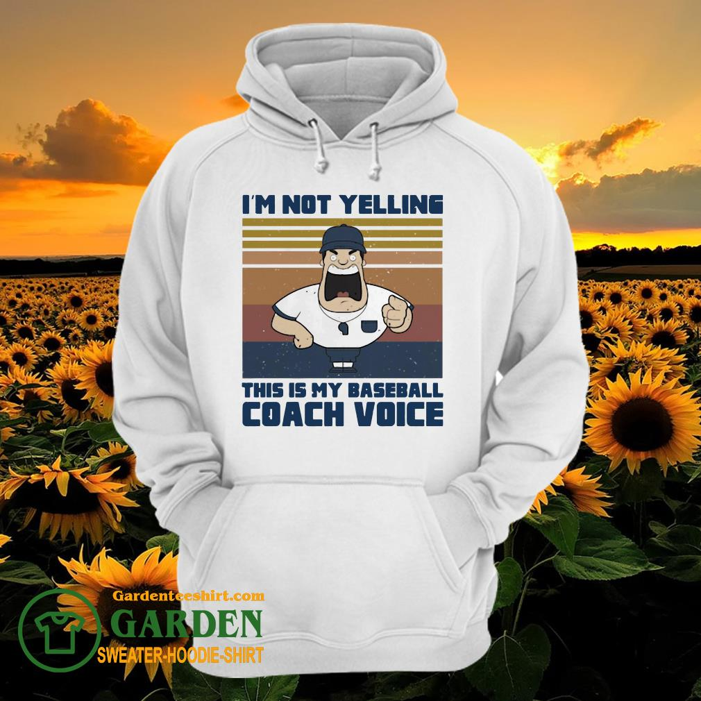 I'm not yelling this is my baseball coach voice vintage hoodie