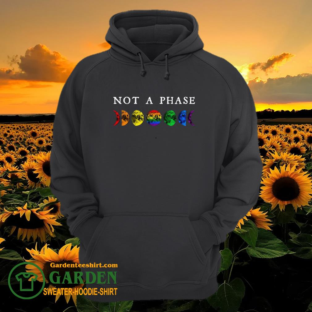 LGBT moon phase not a phase hoodie