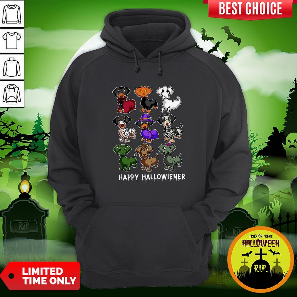 Dachshund Happy Halloweiner Funny Halloween Dogs Lover Gifts Hoodie