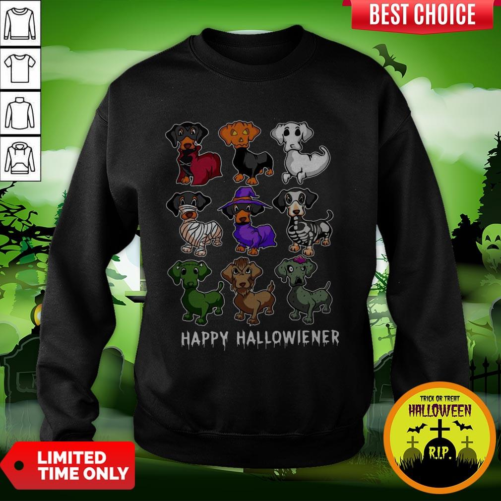 Dachshund Happy Halloweiner Funny Halloween Dogs Lover Gifts Sweatshirt