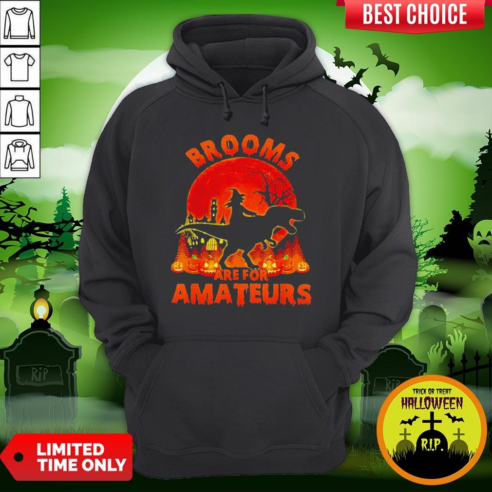 Witch Riding Dinosaurs Brooms Are For Amateurs Halloween Hoodie
