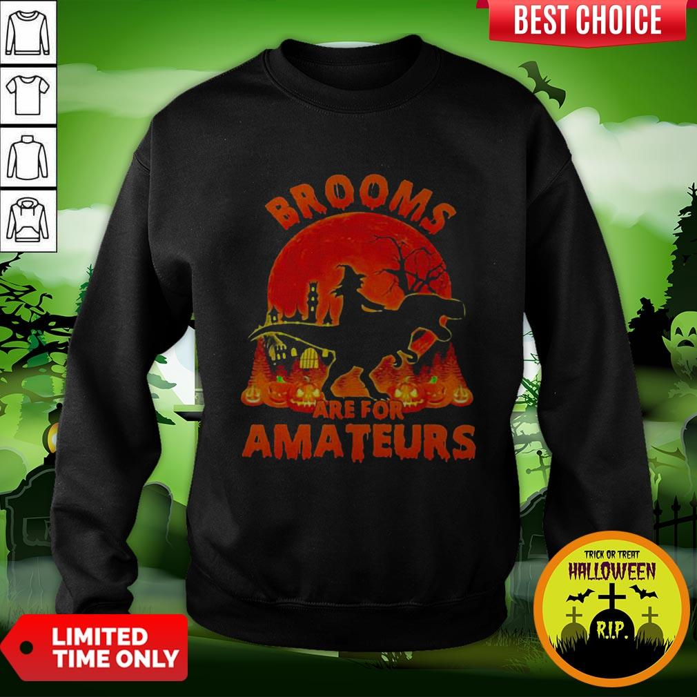 Witch Riding Dinosaurs Brooms Are For Amateurs Halloween Sweatshirt