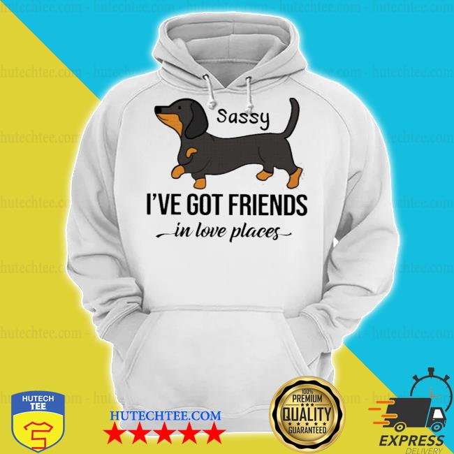 Dachshund sassy i've got friends in low places s hoodie